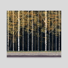 Aspens - Canvas by Jack Preen