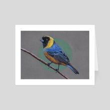 Golden-collared tanager - Art Card by Mikhail Vedernikov