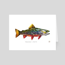 Labeled Brook Trout - Art Card by Eric VanAllen