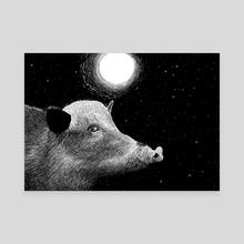 Wild boar - Canvas by Galeria Ginkgo