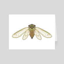 Cicada - Art Card by Isabel Hundley