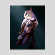 Owl - Canvas by Allan Gower