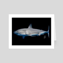 Great White Shark - Art Card by Fabiana Pereira