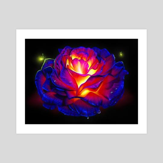 Glowing Rose by Morgan Davidson