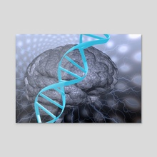 DNA strand and brain - Acrylic by Bruce Rolff