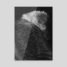 Bald Eagle - Acrylic by WickedIllusion
