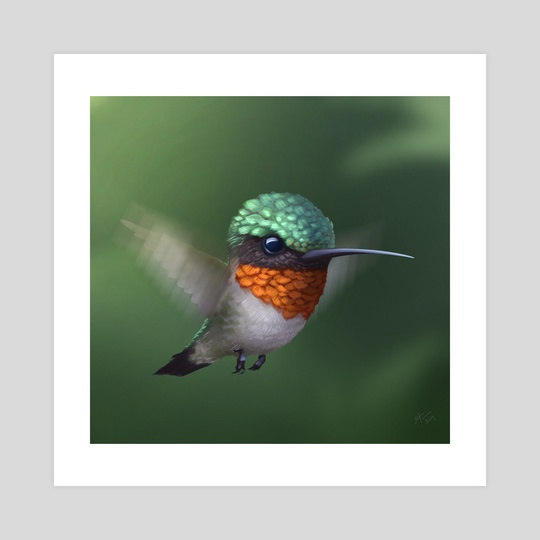 Hummingbird by Shaun Keenan