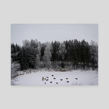 Wild Tales - Canvas by Linas Vaitonis