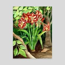 'Minerva' Amaryllis - Canvas by Fiona Dunn