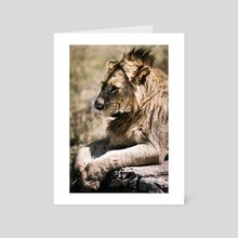 Out of Bed Lion - Art Card by Andreas Boehler
