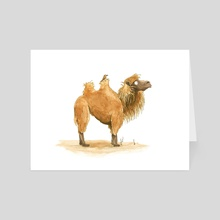 Marvin the Camel - Art Card by Lucy Reynolds
