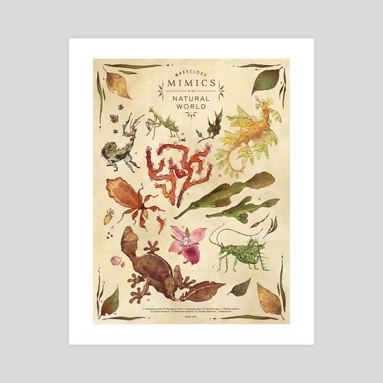 Marvelous Mimics of the Natural World by Rachel Lynn