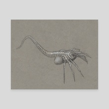 Facehugger - Canvas by Gibby  Kain