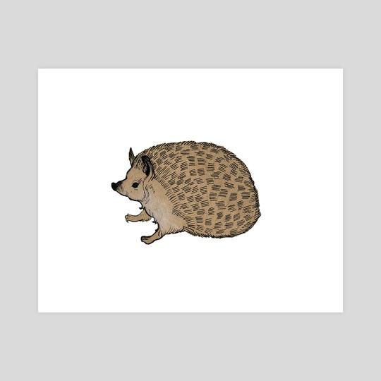 Hedgehog by Alice Holleman