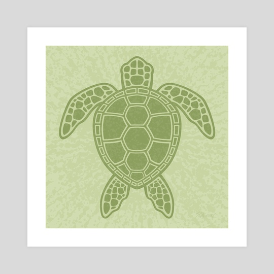Green Sea Turtle by John Schwegel