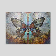 shaman butterfly magic - Acrylic by Charles Taylor