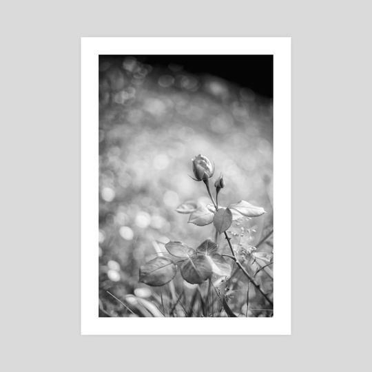 nostalgia by divina quinina