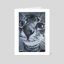 The Curious Kitten - Art Card by Joel Witiw