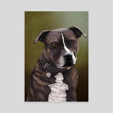 Staffordshire Bull Terrier - Canvas by Carl Conway