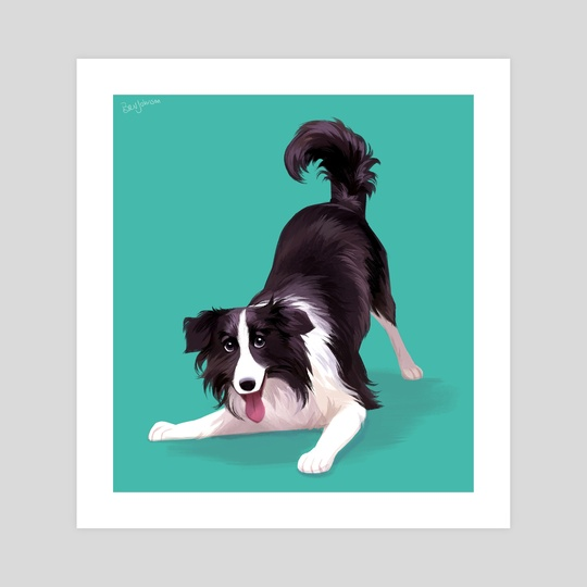 Border Collie by Beverly Johnson