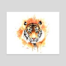 Tiger in watercolour - Canvas by Kieran O'Connor