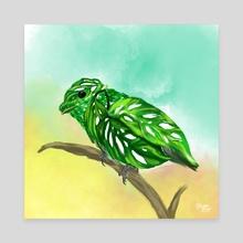 Green Broadbill + Monstera Adansonii - Canvas by Meghan Keeley