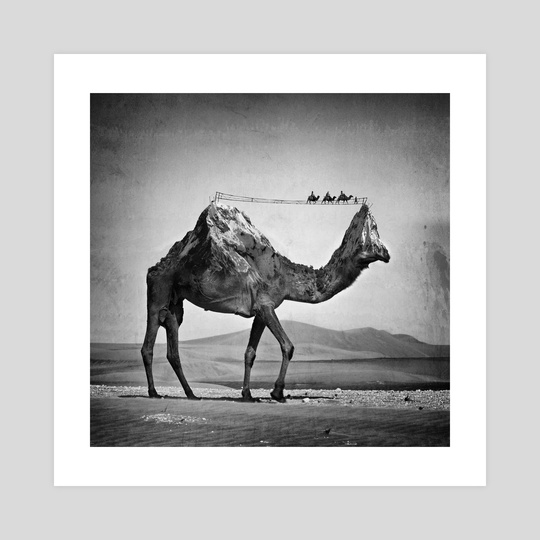 Camel & Mountain by Sarah DeRemer