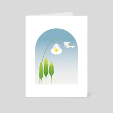 Utricularia alpina - Art Card by Koo
