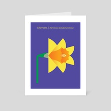 Daffodil - Art Card by Christopher Dina