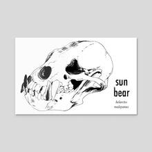 Sun Bear - Acrylic by Aimee Flom