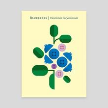 Fruit: Blueberry - Canvas by Christopher Dina
