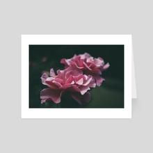 Pink Ladies - Art Card by Kristin Elsen