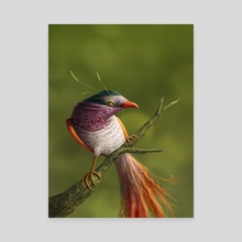 Bird - Canvas by Heleen Steyn