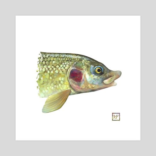 whitefish square by Eric VanAllen