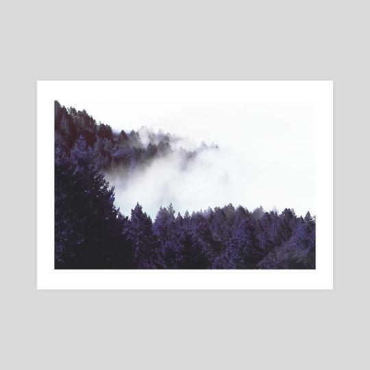Mystery Fog by 83 Oranges