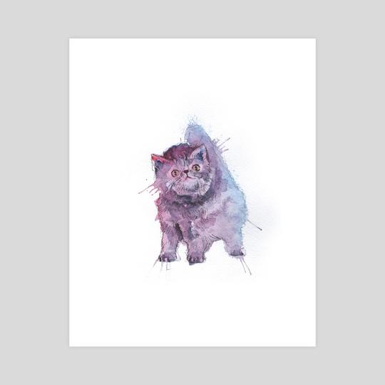 Cat by Dmitry Kaidash