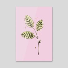 Green leaves on pink - Acrylic by Ellen Wilberg