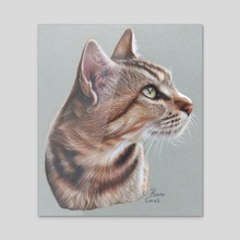 Meow - Acrylic by Katharina Gozé