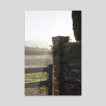Horse  - Acrylic by Ella Weisskamp