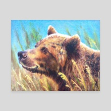 Bear - Canvas by Margot Bloom