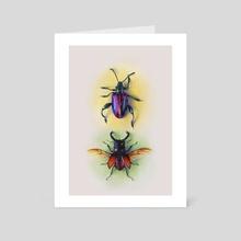 Beetle Study  - Art Card by Morgan Davidson