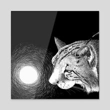 Iberian lynx - Acrylic by Galeria Ginkgo