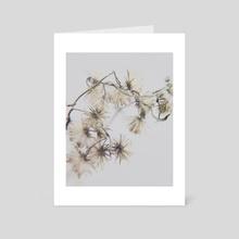 Dry flowers 2 - Art Card by Irina Volkova