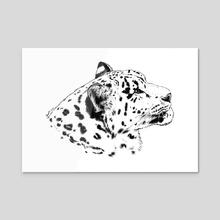 Snow Leopard Gazing Upward - Acrylic by Samantha deG.