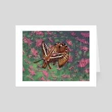 Fennec Moth - Art Card by Kae Hunter