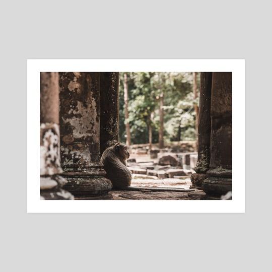 Macaque Angkor Wat Cambodia by Monika Lis