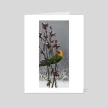 Carolina Parakeet - Art Card by Andrew Sonea