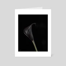Black Calla Lily 1 - Art Card by Andi McLeish
