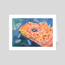 I Sea You (Turtle and Plastic Bottles) - Art Card by Stephanie KILGAST