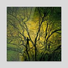 Climb - Acrylic by Paul Raven